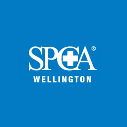 SPCA Wellington